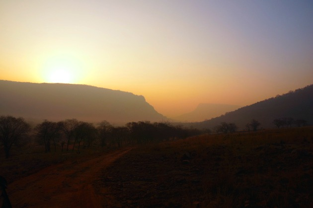 Ranthambore National Park India